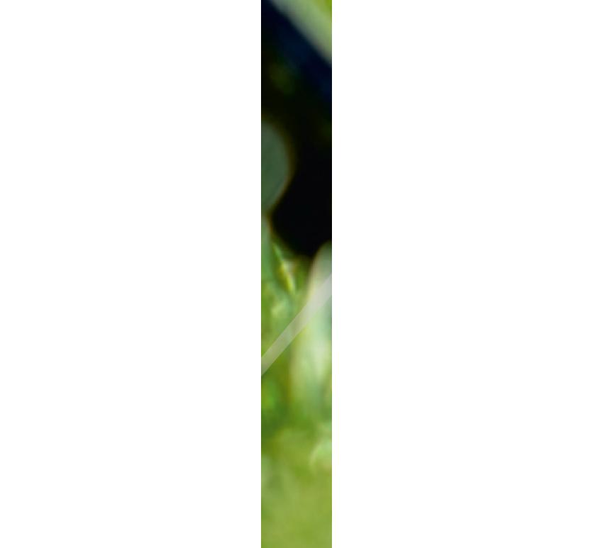 SSC_1